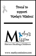 Marleys Mission, Horse, Equestrian Therapy
